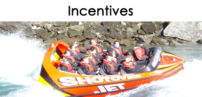 TMG Incentives